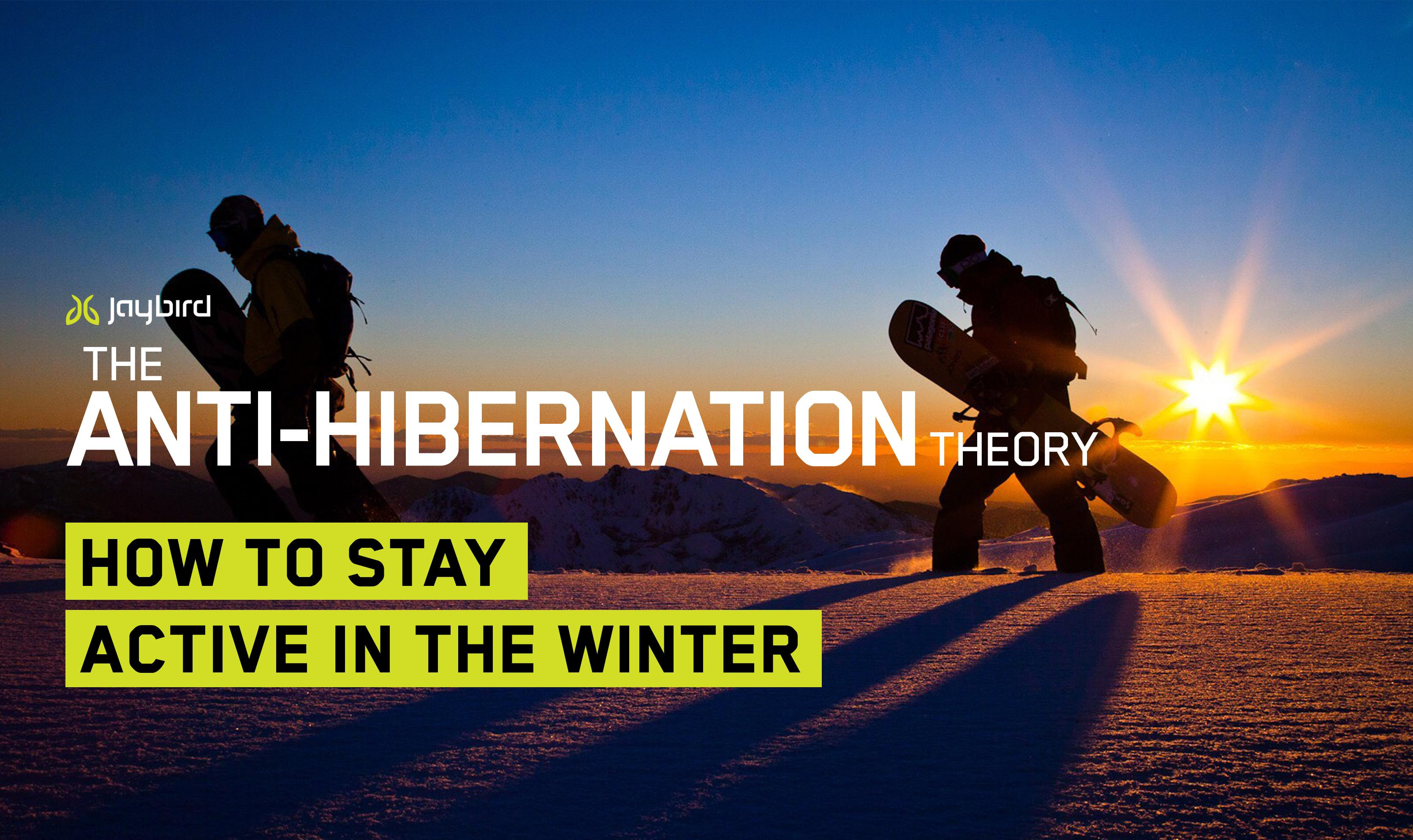 The Anti-Hibernation Theory: How to Stay Active in The Winter